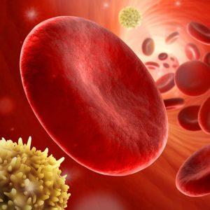 UV-B-Behandlung erhöht Sauerstoffgehalt (Fotolia)