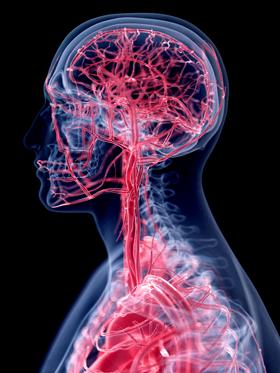 Physiotherapie - ein zusätzliches Element in der Augenbehandlung (Shutterstock)