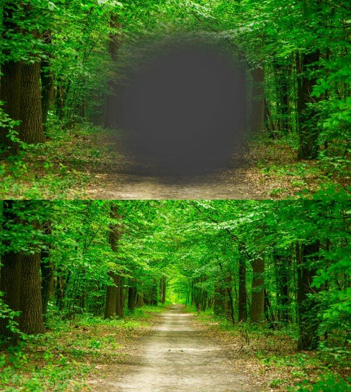 This is more or less how patients with macular degeneration see their surroundings. Above: with AMD. Below: healthy eye