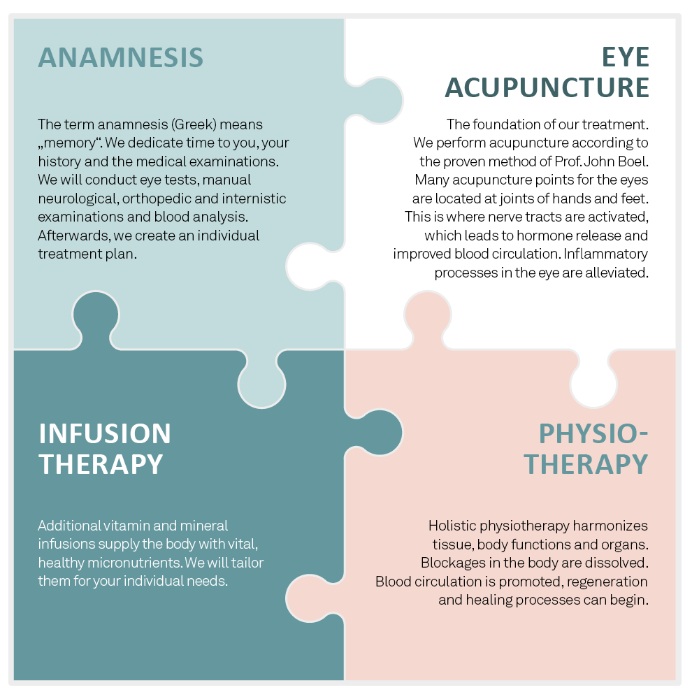 The four Elements of Integrated Eye Therapy according to Noll