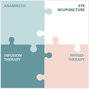 Four Elements of Integrated Eye Therapy according to Noll